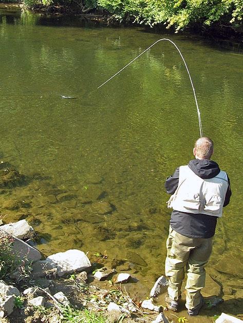 Fischen an der Agger